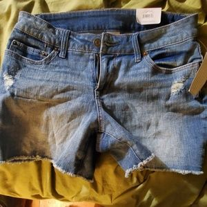 Time and true size 6 shorts